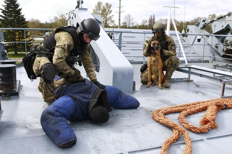 zdjęcie - Bojowe psy weszły na okręt