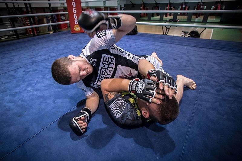 zdjęcie - Gala MMA w Siedlcach